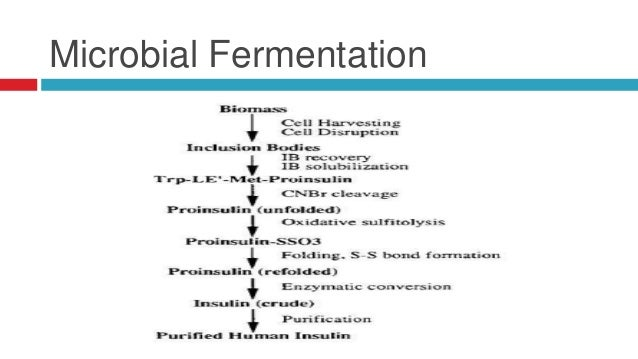 ... fermentation 11 significance of human insulin 1978 insulin from