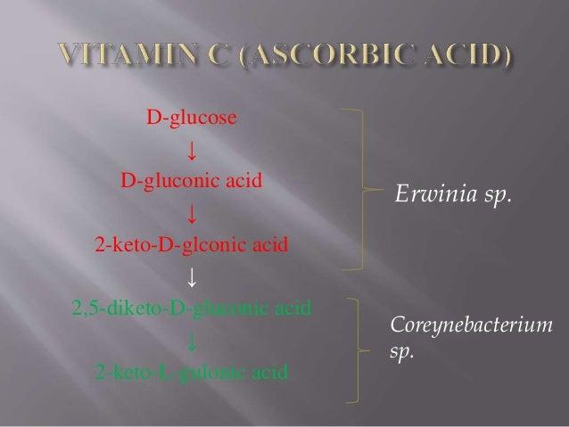 D-glucose ↓ D-gluconic acid ↓ 2-keto-D-glconic acid ↓ 2,5-diketo-D-gluconic acid ↓ 2-keto-L-gulonic acid Erwinia sp. Corey...
