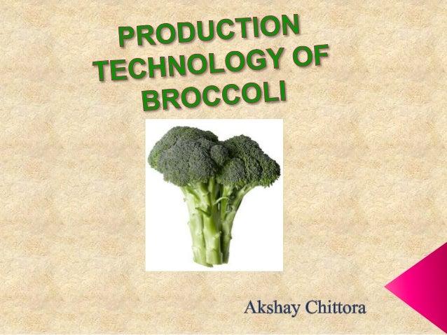 INTRODUCTION  Botanical name: Brassica oleracea var. italica  Family : Brassicaceae(Crucifereae)  Origin : Mediterranea...
