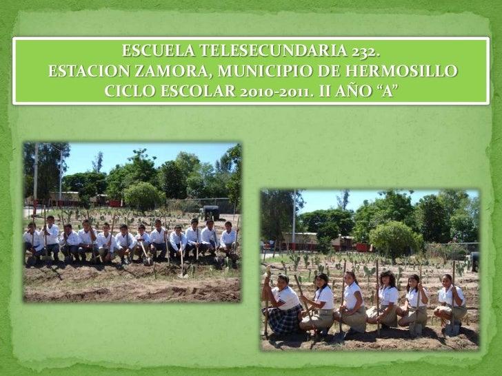 """ESCUELA TELESECUNDARIA 232.<br /> ESTACION ZAMORA, MUNICIPIO DE HERMOSILLO<br />CICLO ESCOLAR 2010-2011. II AÑO """"A""""<br />"""