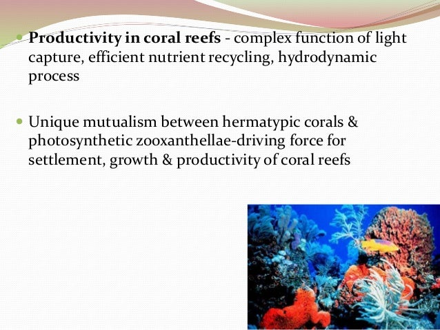 coral reef ecosystem - lit technique essay Stressors to coral reef ecosystems  literature on the impacts to coral reefs  associated with diving and snorkeling are more  (to the extent possible, in that  no opinions or essays are included, and the focus is on  education on the type  of anchor and anchoring techniques would greatly minimize anchor.