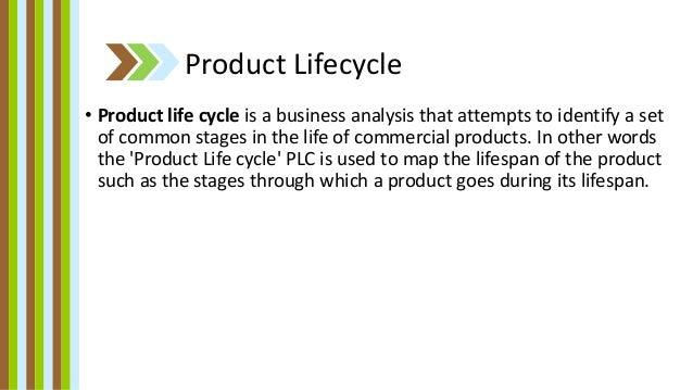 Maggi Brand In India | Case Study Solution | Case Study ...