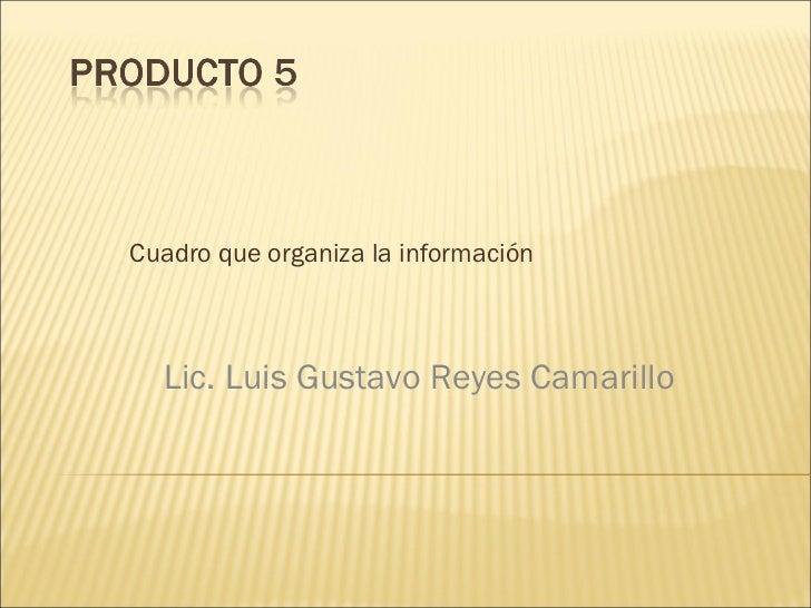 Cuadro que organiza la información Lic. Luis Gustavo Reyes Camarillo