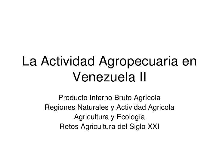La Actividad Agropecuaria en Venezuela II <br />Producto Interno Bruto Agrícola<br />Regiones Naturales y Actividad Agrico...