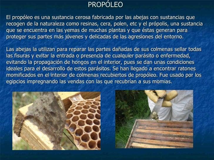 Los medios de los hongos en de baño