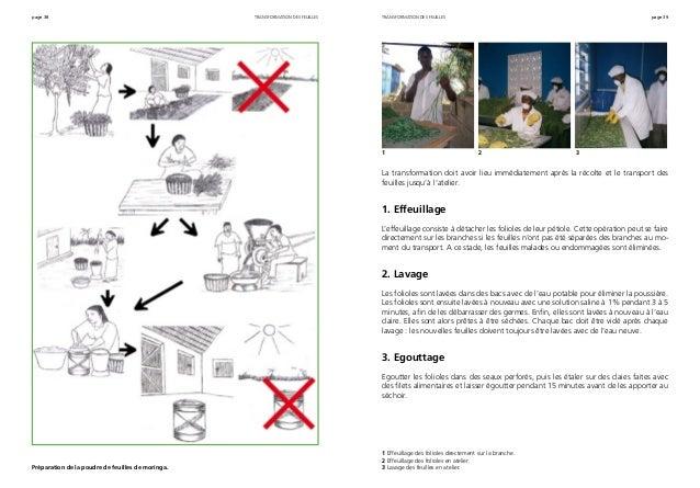 page 38 page 39transformation des feuilles Préparation de la poudre de feuilles de moringa. La transformation doit avoir l...