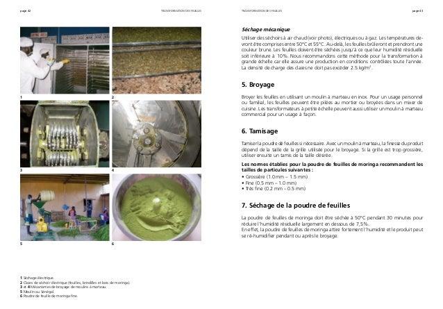 page 42 page 43transformation des feuilles 1 Séchage électrique. 2 Claies de séchoir électrique (feuilles, brindilles et b...