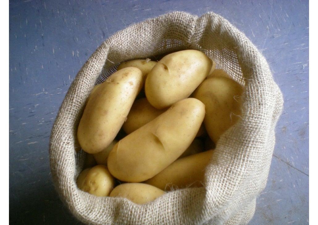 Produits agri production