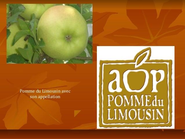 Pomme du Limousin avec   son appellation