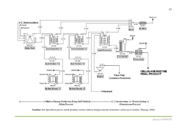 Produksi enzim selulase 28 ccuart Images
