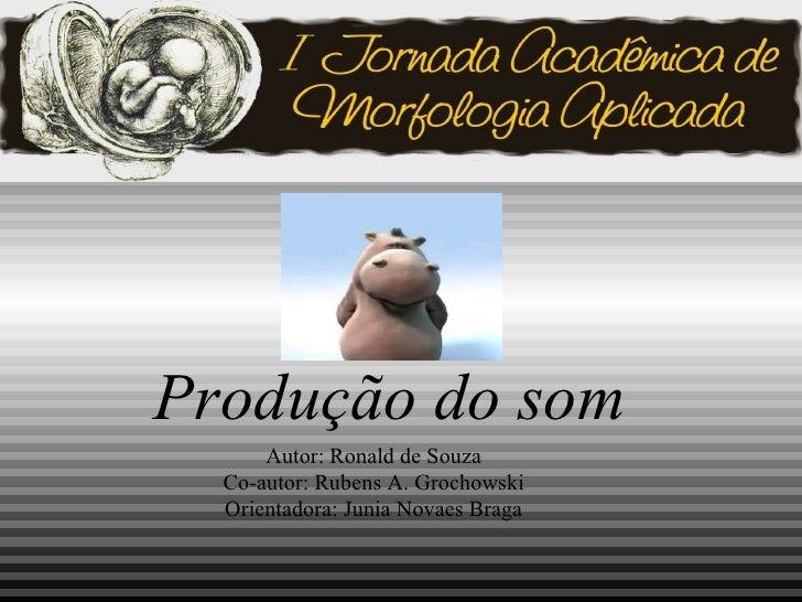 Produção do som Autor :  Ronald de Souza Co-autor :  Rubens A. Grochowski Orientadora :  Junia Novaes Braga
