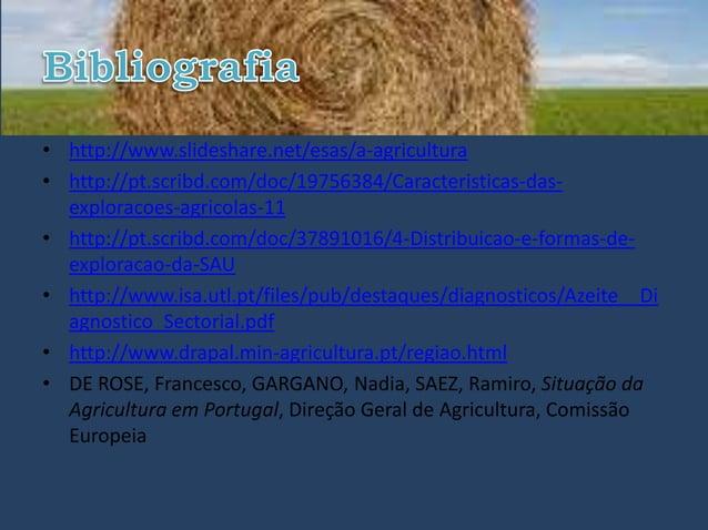 • http://www.slideshare.net/esas/a-agricultura• http://pt.scribd.com/doc/19756384/Caracteristicas-das-  exploracoes-agrico...