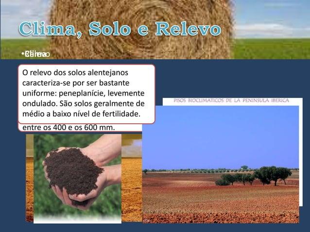 •Relevo•ClimaO relevoapresenta características  clima dos solos alentejanosmediterrânicas ecaracteriza-se por ser bastante...