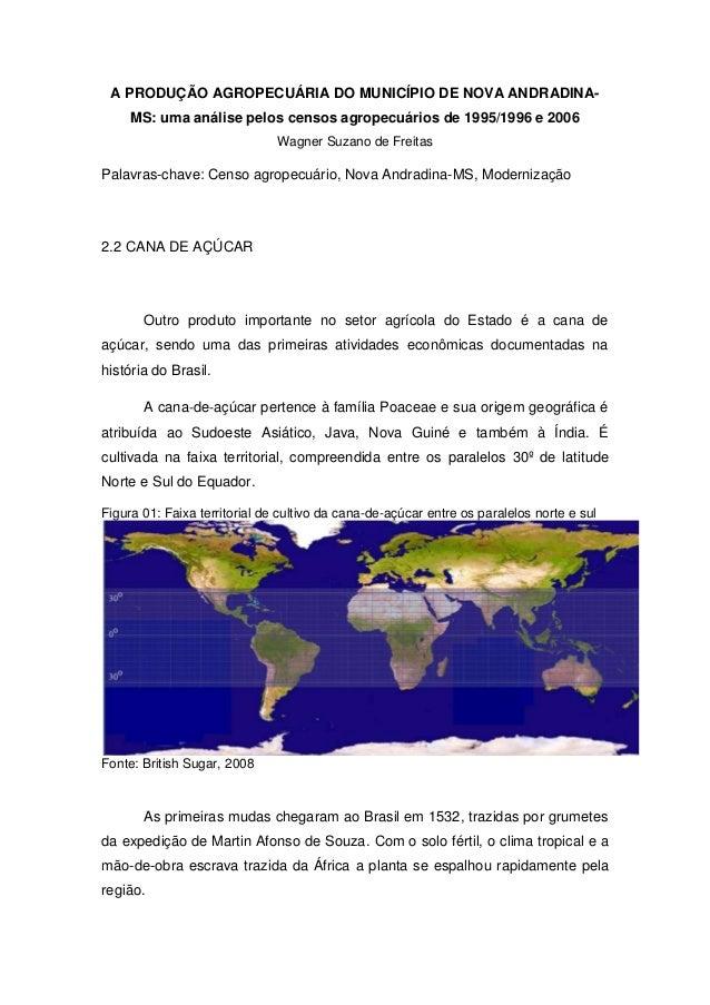 A PRODUÇÃO AGROPECUÁRIA DO MUNICÍPIO DE NOVA ANDRADINA- MS: uma análise pelos censos agropecuários de 1995/1996 e 2006 Wag...