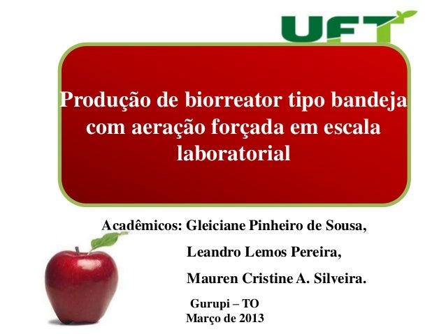 Produção de biorreator tipo bandeja  com aeração forçada em escala           laboratorial    Acadêmicos: Gleiciane Pinheir...