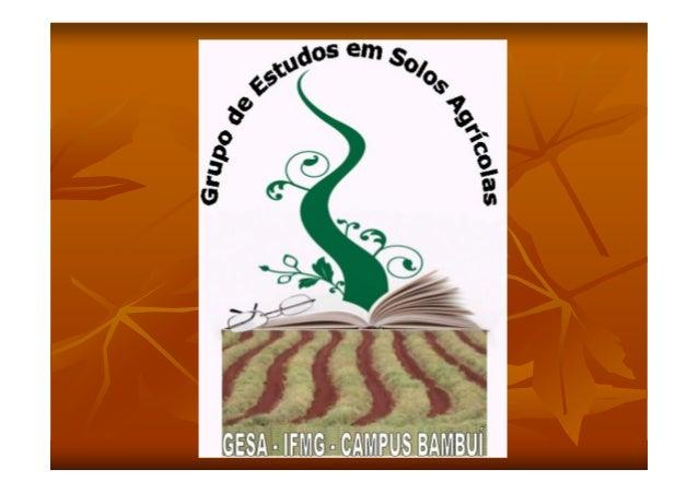 PRODUPRODUÇÇÃO E NUTRIÃO E NUTRIÇÇÃOÃODE BONSAIDE BONSAIElaboradoresElaboradoresCaio Henrique da SilvaCaio Henrique da Sil...