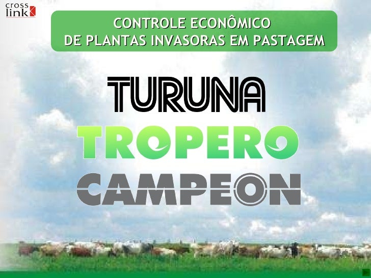 CONTROLE ECONÔMICO  DE PLANTAS INVASORAS EM PASTAGEM