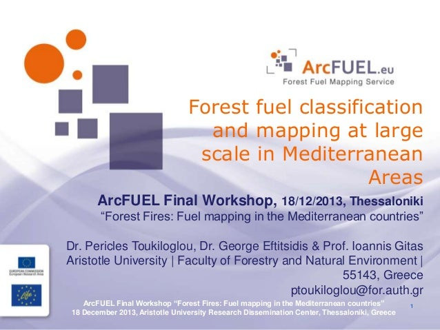 Forest fuel classification and mapping at large scale in Mediterranean Areas ArcFUEL Final Workshop, 18/12/2013, Thessalon...