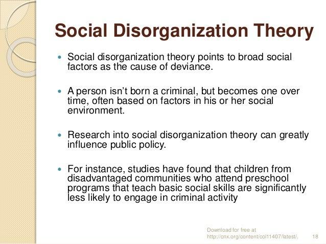 social disorganization perspective