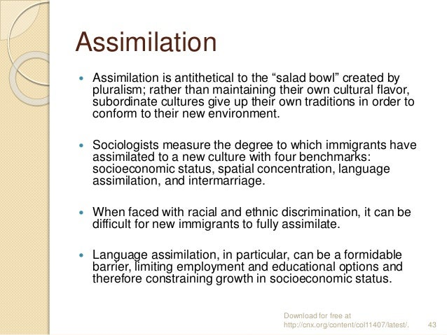 four assimilation options essay Essays on immigrant assimilation torres, javier 2013  occupational  assimilation process of 2000-2001 immigrants in their first four years   basecase, but it requires for the number of options (to choose from) to be lim-ited.