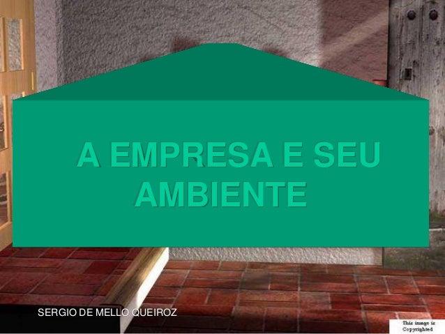 SERGIO DE MELLO QUEIROZ A EMPRESA E SEU AMBIENTE