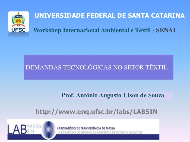 UNIVERSIDADE FEDERAL DE SANTA CATARINA Workshop Internacional Ambiental e Têxtil - SENAIDEMANDAS TECNOLÓGICAS NO SETOR TÊX...
