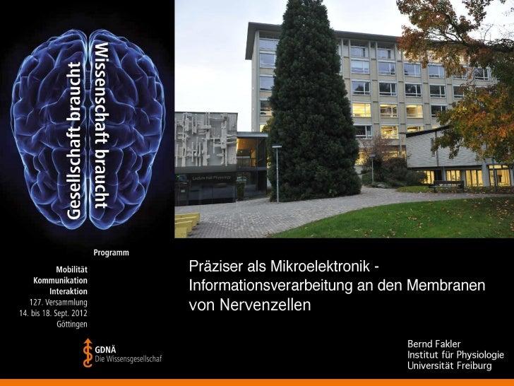 Aufnahme von biologischer 'Information' - Reizleitung