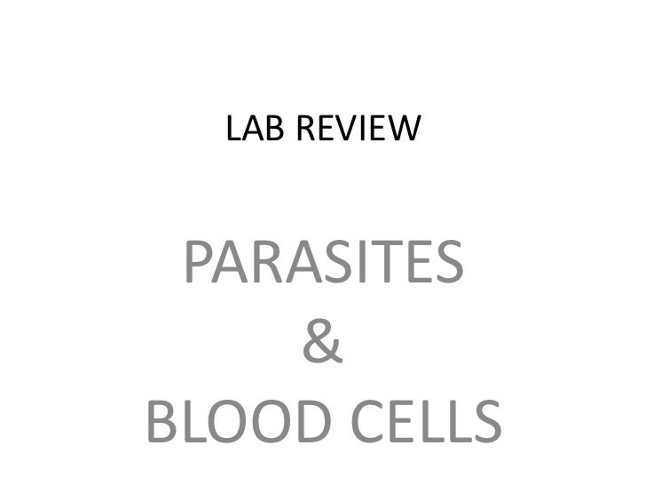 LAB REVIEW<br />PARASITES<br />&<br />BLOOD CELLS<br />