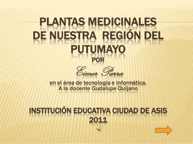 PLANTAS MEDICINALESDE NUESTRA REGIÓN DEL      PUTUMAYO                     POR              Eimer Parra     en el área de ...