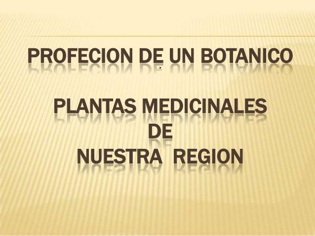PROFECION DE UN BOTANICOPLANTAS MEDICINALESDENUESTRA REGION: