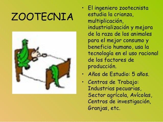 ZOOTECNIA • El ingeniero zootecnista estudia la crianza, multiplicación, industrialización y mejora de la raza de los anim...