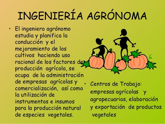 INGENIERÍA AGRÓNOMA • El ingeniero agrónomo estudia y planifica la conducción y el mejoramiento de los cultivos haciendo u...