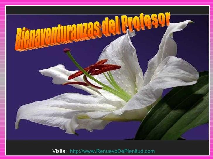 Bienaventuranzas del Profesor Visita:  http://www.RenuevoDePlenitud.com
