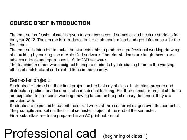 Professional Autocad Slide 2