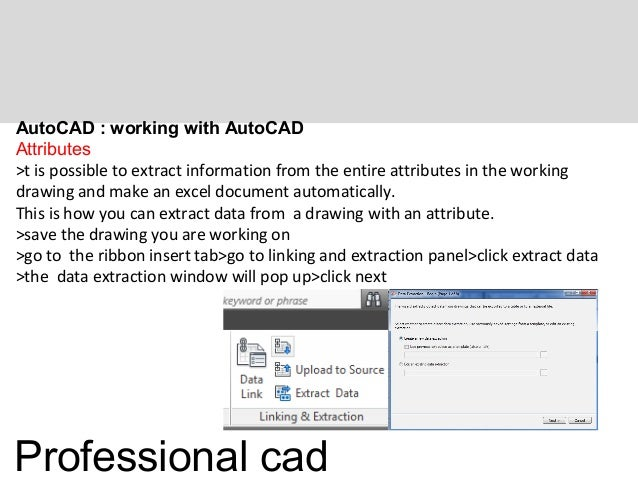 Professional Autocad