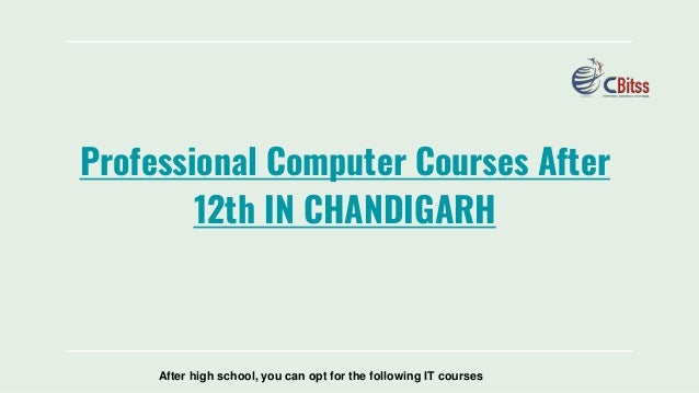 Professional Computer Courses After 12th IN CHANDIGARH After high school, you can opt for the following IT courses