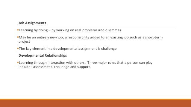 Critical Components of an Effective Professional Development Plan 1. Assessment There is an established standard of succes...