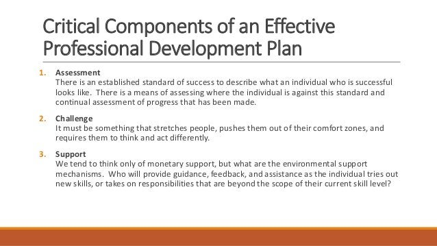 10 Key Points for Professional Development 1) Developing Action steps 2) Set Long term goals first 3) Technical knowledge ...