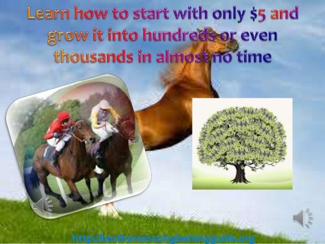 Professional horse betting betting predictions basketball