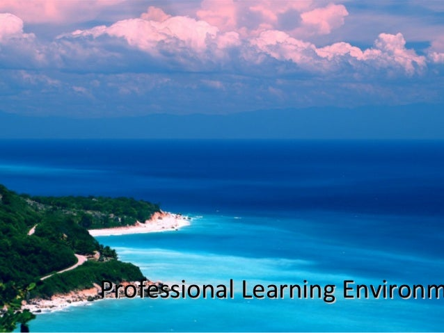 Professional Learning Environm