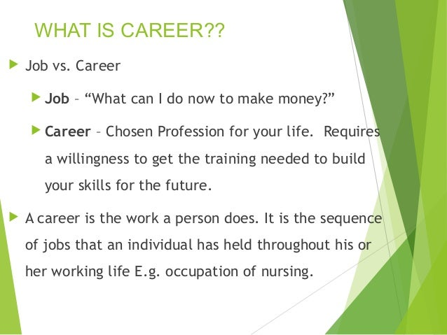 What is my best career option
