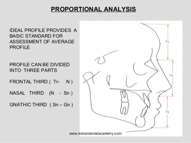 Facial Profile Analysis 10