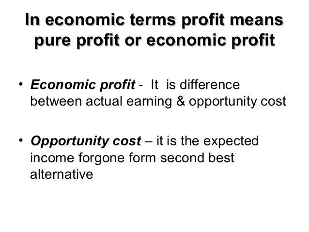 4 Main Theories of Profit