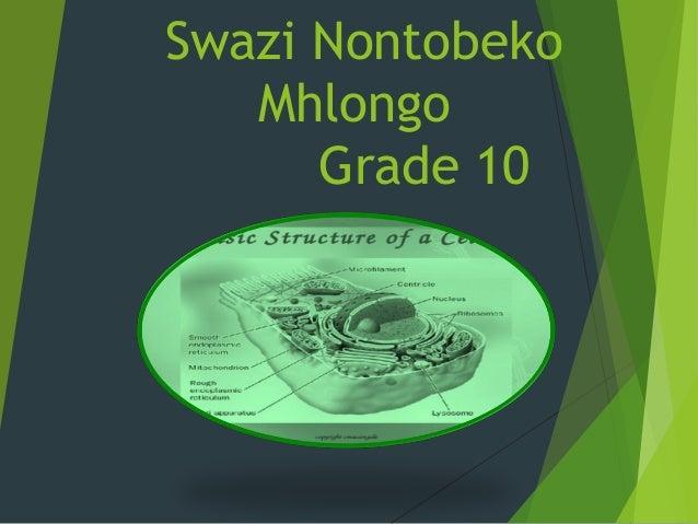 Swazi Nontobeko Mhlongo Grade 10