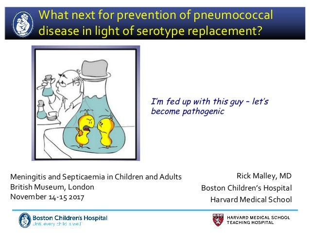 What next for prevention of pneumococcal disease in light of serotype replacement? Rick Malley, MD Boston Children's Hospi...