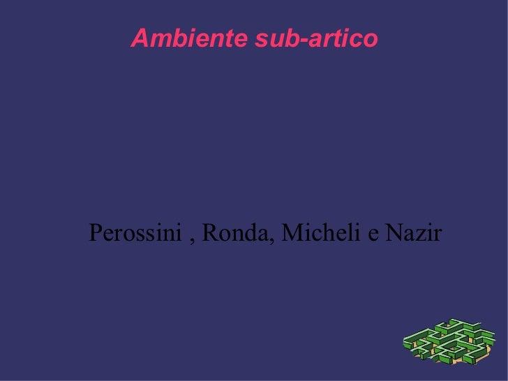Ambiente sub-artico Perossini , Ronda, Micheli e Nazir