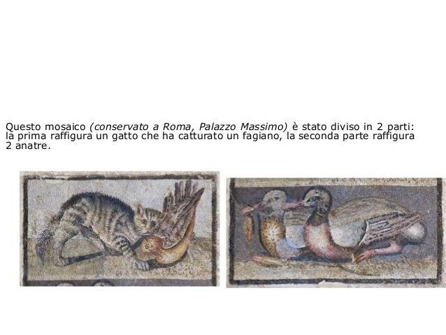 Questo mosaico (conservato a Roma, Palazzo Massimo) è stato diviso in 2 parti: la prima raffigura un gatto che ha catturat...