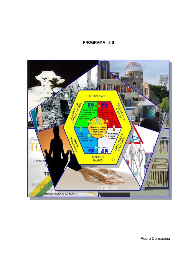 PROGRAMA 5 S               Pedro Domacena