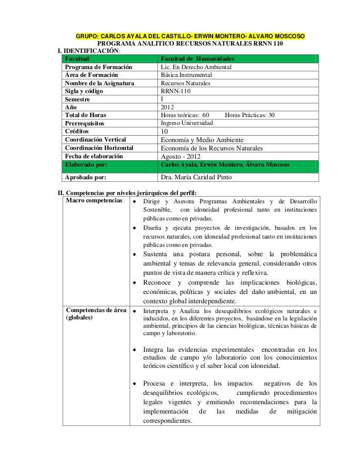 GRUPO: CARLOS AYALA DEL CASTILLO- ERWIN MONTERO- ALVARO MOSCOSO                PROGRAMA ANALITICO RECURSOS NATURALES RRNN ...