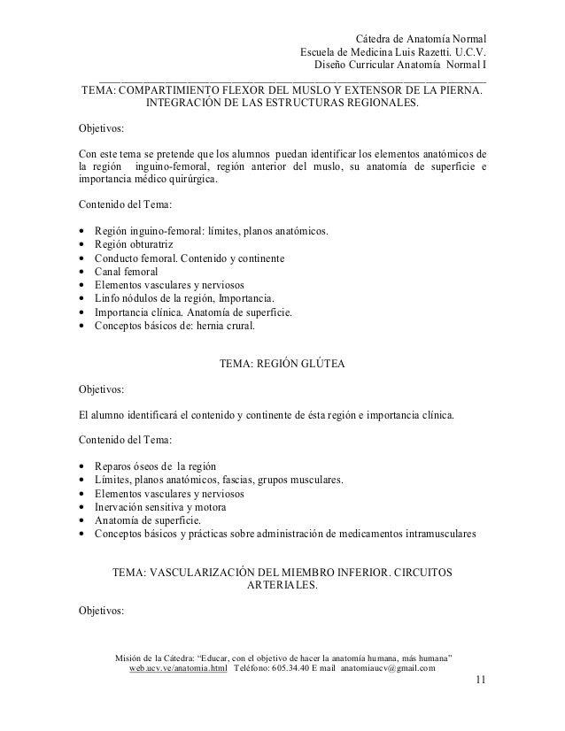 Magnífico Temas De Investigación De Papel Anatomía Foto - Anatomía ...